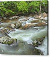 Little River Rapids Acrylic Print