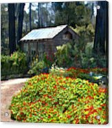 Little Rustic Cabin In A Clearing In The Woods Acrylic Print