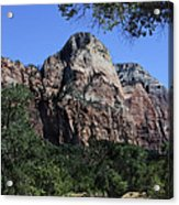 Little Virgin River - Zion National Park Acrylic Print