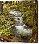 Little Zig Zag Stream Acrylic Print