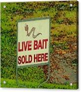 Live Bait Sign Acrylic Print
