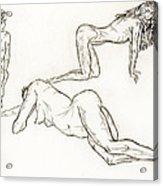 Live Nude Female No. 37 Acrylic Print