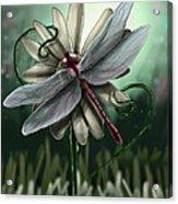Ll's Dragonfly Acrylic Print