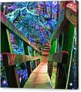 Log Bridges Acrylic Print
