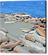 Logged Out Acrylic Print