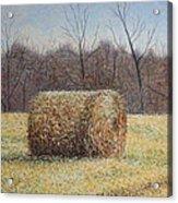 Lone Haybale Acrylic Print by Patsy Sharpe
