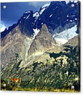 Lonely Mountain Acrylic Print