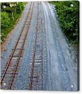 Long And To The Left Acrylic Print