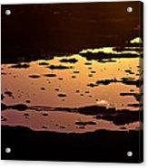 Long Reef Golden Pond Acrylic Print