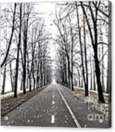 Long Way Acrylic Print