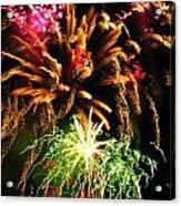 Longwood Fireworks Acrylic Print