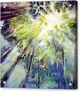 Look Up Acrylic Print
