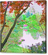 Looking Through The Trees  Acrylic Print
