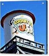 Looney Tunes I Acrylic Print