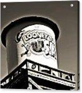 Looney Tunes II Acrylic Print