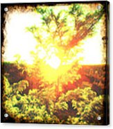 Los Alamos Sunset Acrylic Print