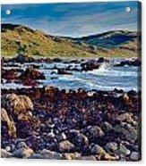 Lost Coast In Winter Acrylic Print