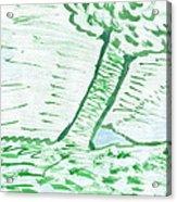 Lost Dams Acrylic Print