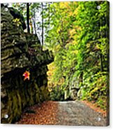 Lost In Pennsylvania 2 Acrylic Print