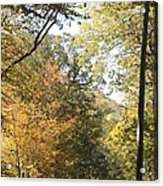 Lost In The Fall Acrylic Print
