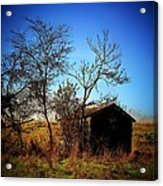 Lost Shed Acrylic Print