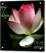 Lotus Flower Holiday Card Acrylic Print