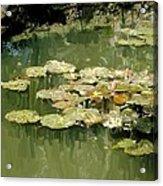 Lotus Pond 2 Acrylic Print