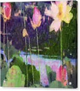 Lotus Reflection - Vertical Acrylic Print