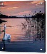 Lough Leane, Killarney National Park Acrylic Print