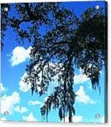 Louisiana Skyscape Acrylic Print