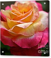 Love And Peace Acrylic Print