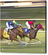 Love Of The Sport Acrylic Print