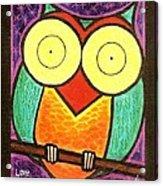 Love Owlways Too Acrylic Print