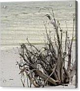Lovers Key Beach Acrylic Print