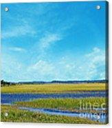 Low Country Marsh Acrylic Print
