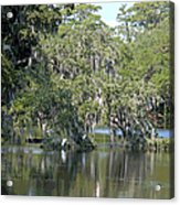 Lowcountry Landscape II Acrylic Print
