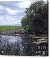 Lower Klamath Wildlife Refuge Acrylic Print
