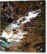 Lower Twin Falls Acrylic Print