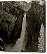 Lower Yosemite Falls Acrylic Print