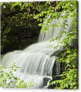 Loyalsock Waterfall Acrylic Print