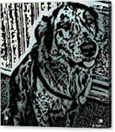 Loyalty Acrylic Print