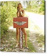 Mailbox 069 Acrylic Print