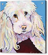 Lucy Acrylic Print by Pat Saunders-White
