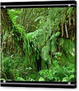 Lush Green Landscape Acrylic Print