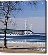 Mackinac Bridge With Trees Acrylic Print