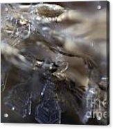 Snowflake Intimate Views Acrylic Print