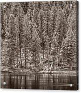 Madison River Yellowstone Bw Acrylic Print