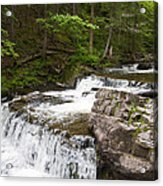Maggies Falls Lower Through A Green Forest Acrylic Print