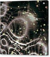 Magic Nights Acrylic Print