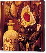Magic Things Acrylic Print by Garry Gay